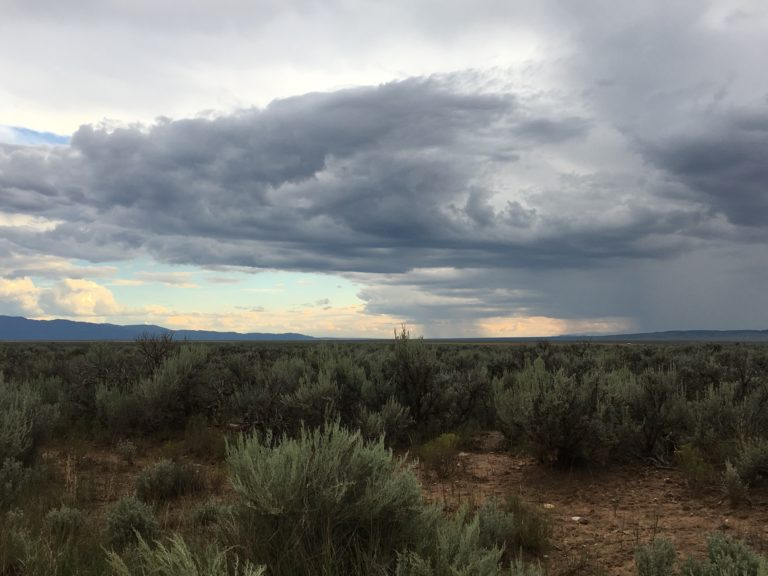 High Desert Permaculture