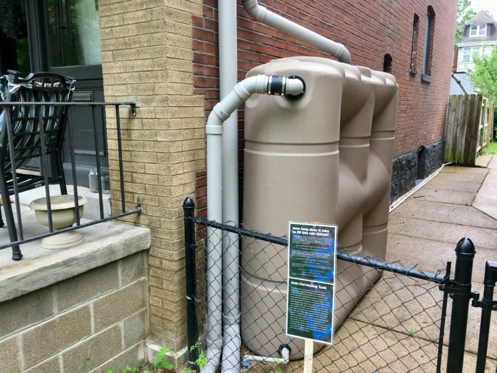 water harvesting cistern